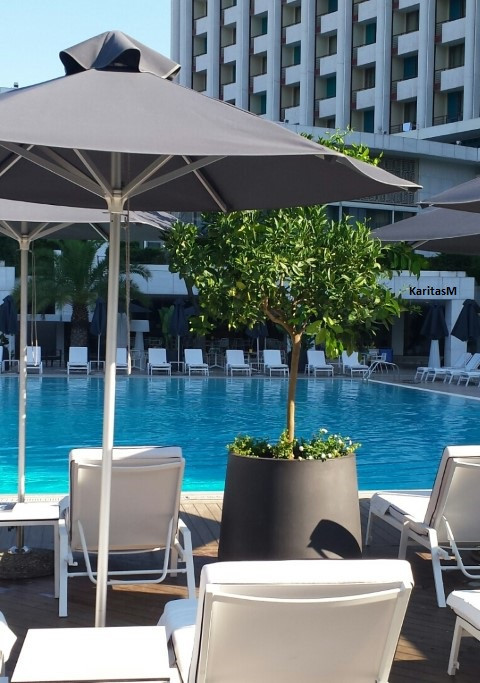 Athens Hilton Hotel Outdoor Pool
