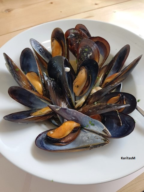 Steamed mussels in wine broth