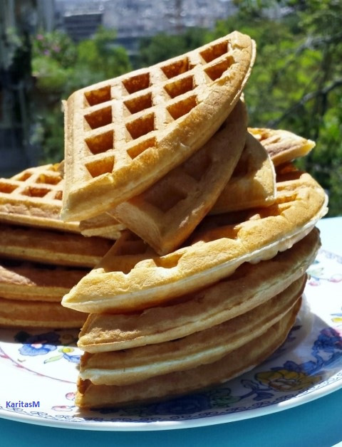 Basic recipe for sugarless waffles!