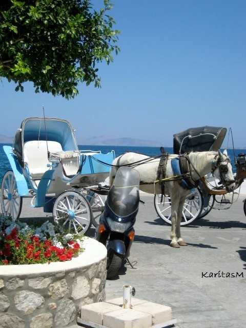 Horse-drawn buggy - ready to take us to hotel