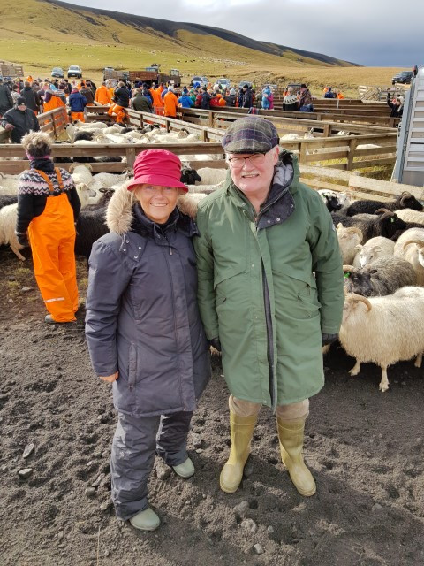 Wearing all weatherproof gear to face the cold and enjoy the sheep