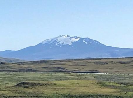 Celebrating Sheep-Herding in Iceland!