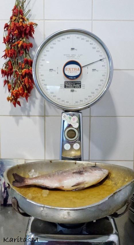 Weighing fresh fish!
