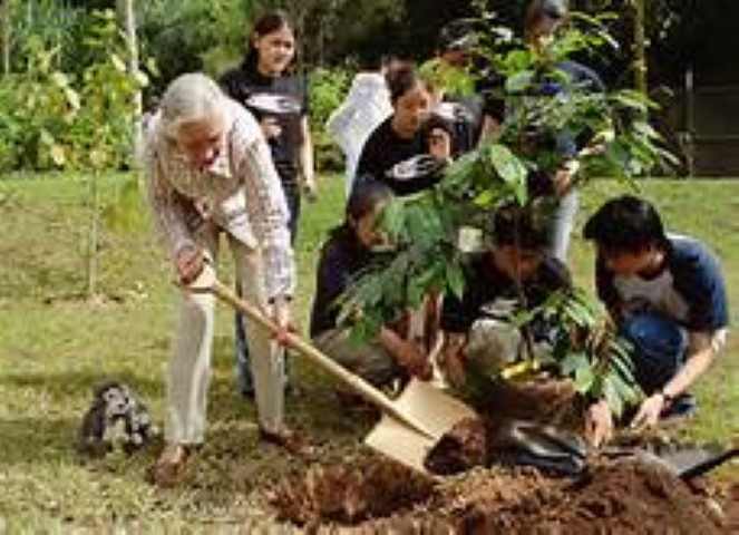 Dr. Jane Goodall working with Youth planting a tree - Roots & Shoots Program