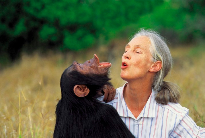 Dr. Jane Goodall with one of her best friends! Photo by Michael Neugebauer