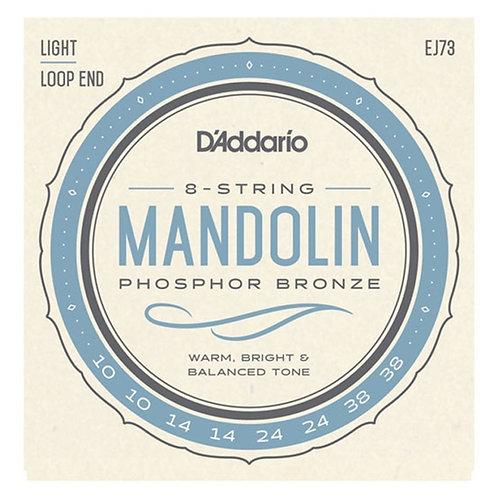 D'Addario Mandolin Set EJ73