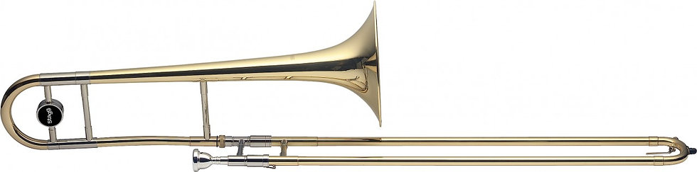 Stagg TR245S Trombone Outfit Bb