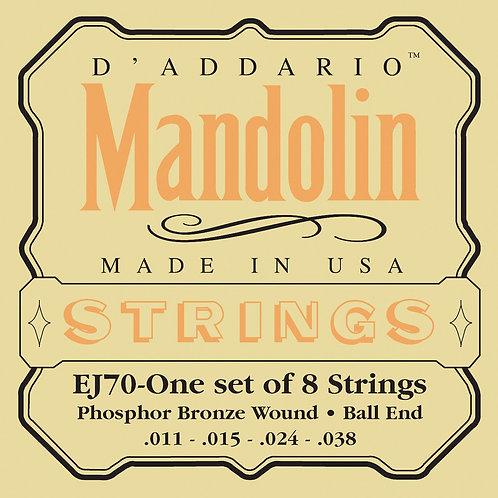 D'Addario Mandolin Set EJ70