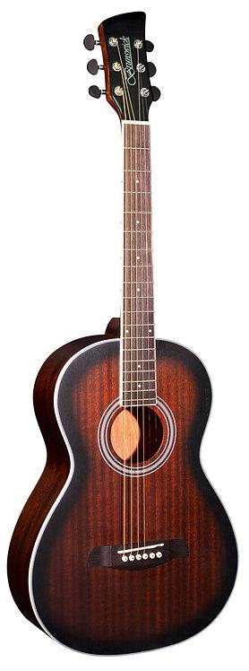 Brunswick BP200, Parlour Size Acoustic