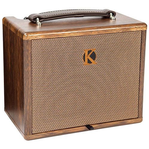 Kinsman KAA45 Mains and Battery Busking Amp