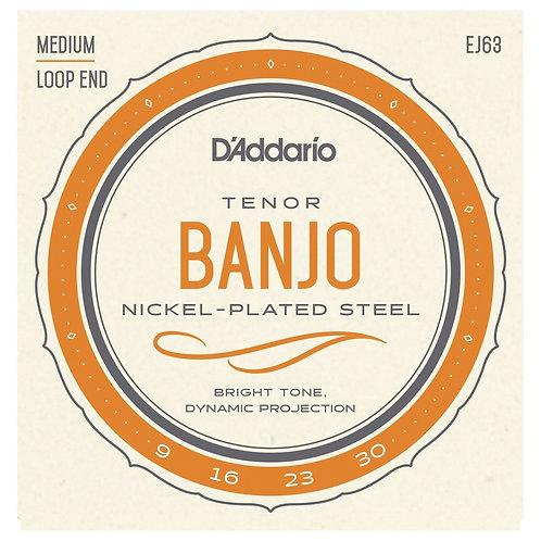 D'Addario 4 String Tenor Banjo Set EJ63