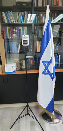 Government of state of israel