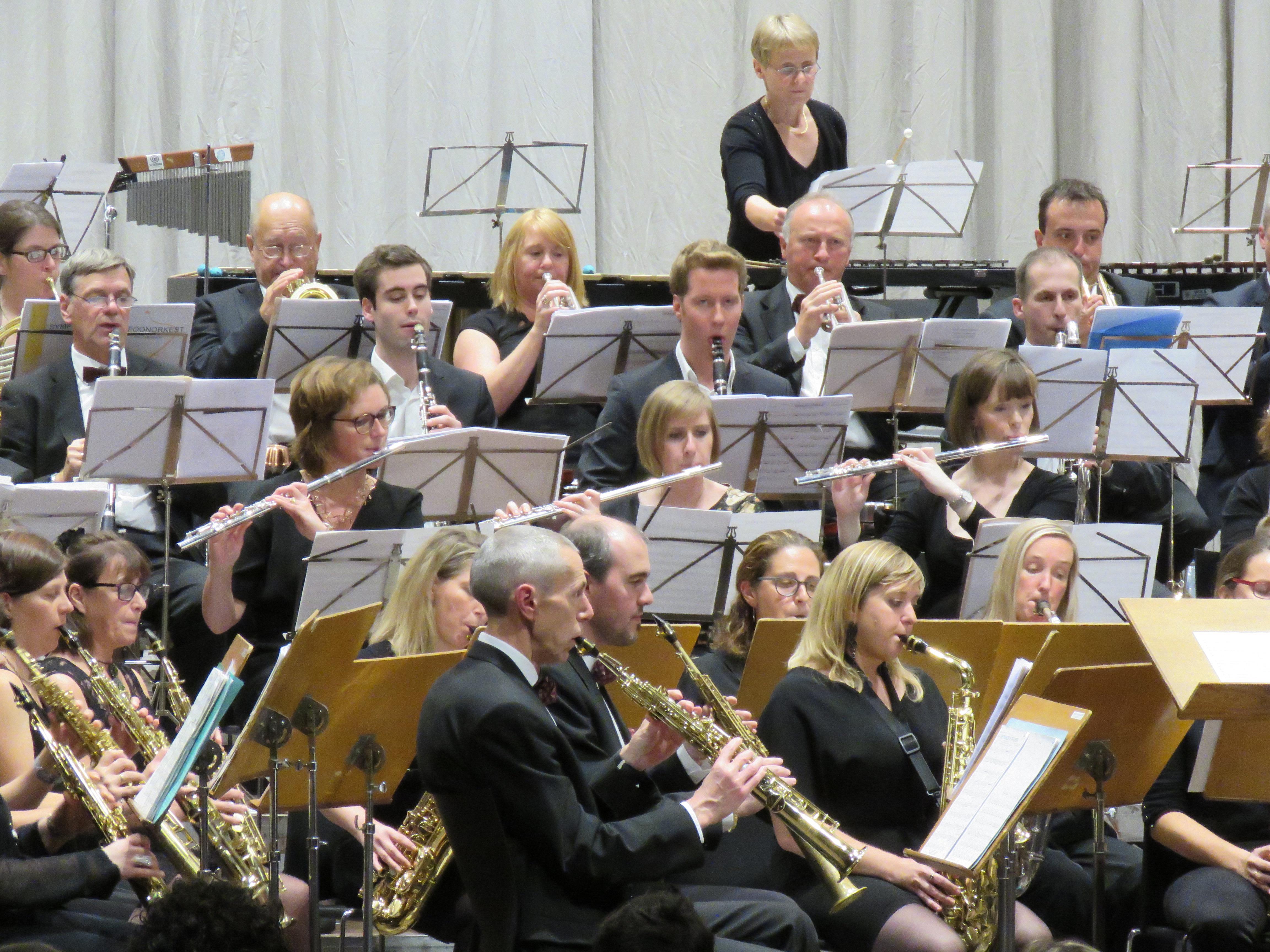 Het Saxofoonorkest - actiefoto
