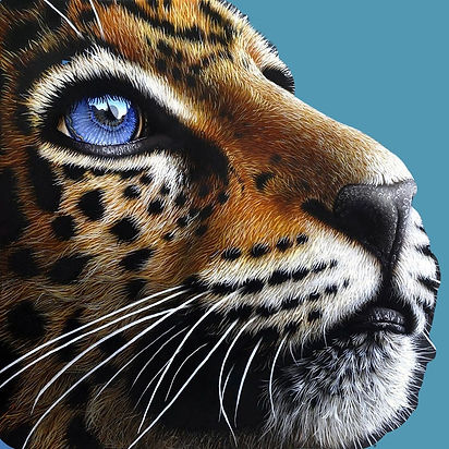 jaguar%2520blue%2520eyes_edited_edited.j