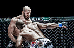 MMA, UFC, Fight