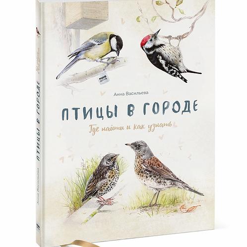 Птицы в городе. Анна Васильева.