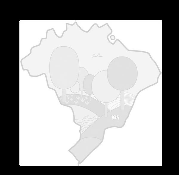 Logo SBSAF 3_edited.png