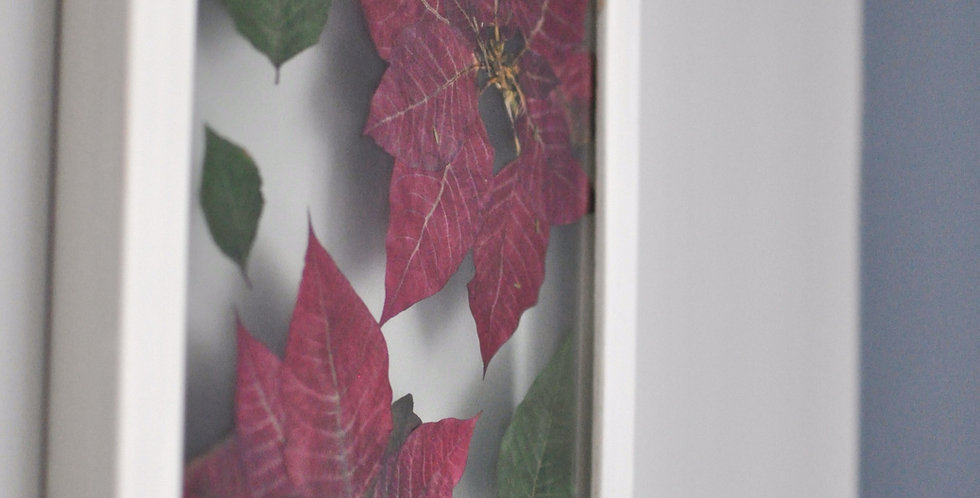 11 x 14 Poinsettia Frame