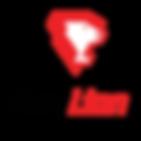 FuryLion Logo.png