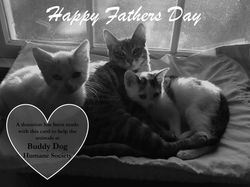 Fathers Day (cat)