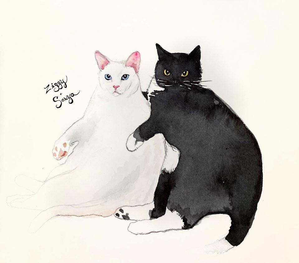 Ziggy & Sonya