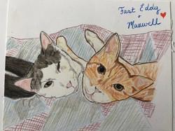 Fast Eddy & Maxwell