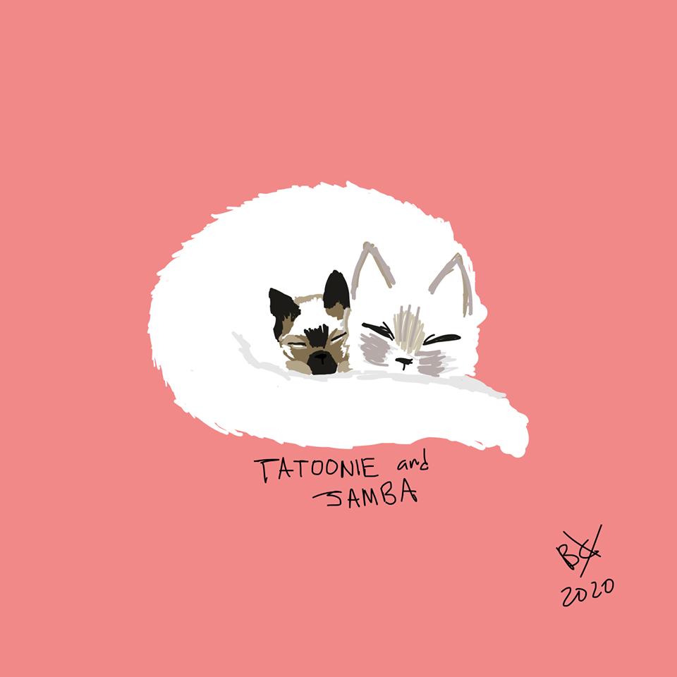 Tatooine & Jamba