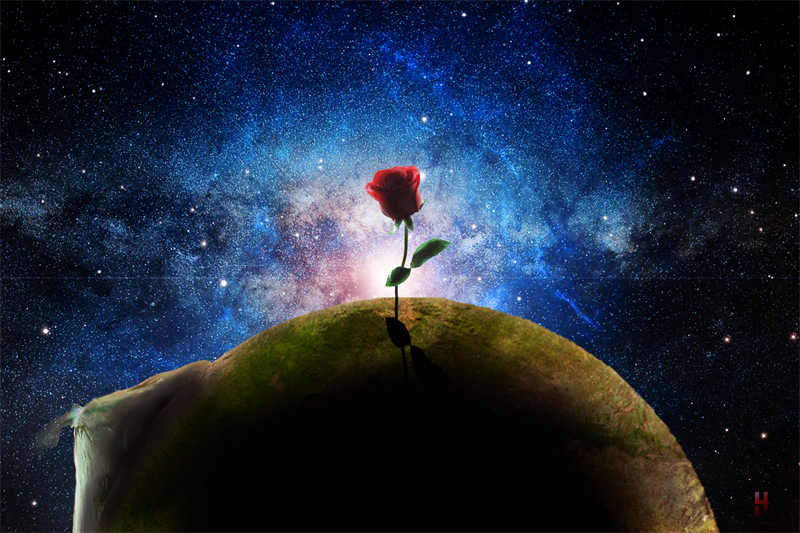 Rose Planet