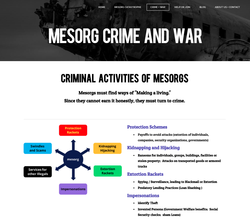 Mesorg Webpage