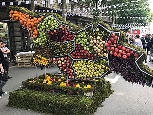 A display in the shape of Georgia, containing the various fruits grown in Geogia's regions.