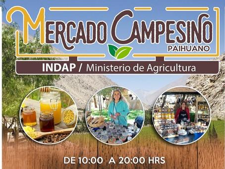 Mercado Campesino de Paihuano INDAP