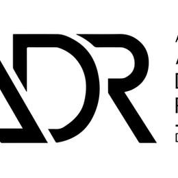 Asian Institute of Alternative Dispute Resolution Hosts Webinar