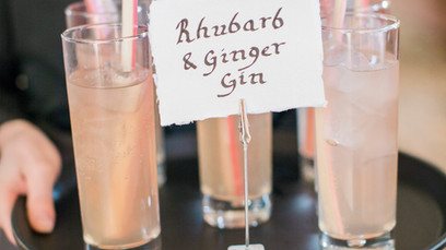 Rhubarb and Gin Cocktail