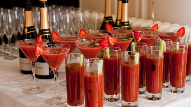 Drinks Reception at Mount Ephraim