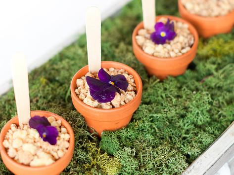 Wedding Reception at Marleybrook House - Saturday 31st July 2021