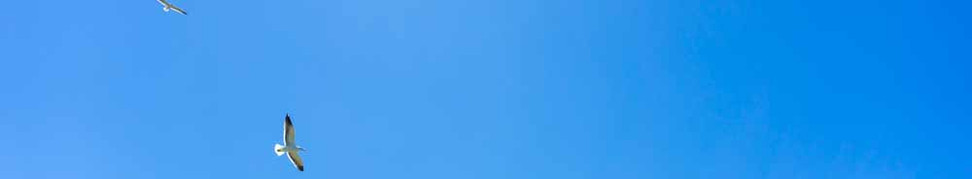 Vista da Pedra do Urubu a partir do Costão da Guarda do Embaú. Durante a temporada de Verão, o céu se encontra predominantemente claro e limpo como se vê aqui, as temperaturas chegam a 36 graus. Foto: Jackson Henrique  .