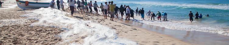 Na temporada da pesca, de maio a julho, não é permitido surfar na praia da Guarda do Embaú, mas a atração está garantida quando ocorre o tradicional cerco da tainha, realizado pelos pescadores nativos. Uma tradição interessante e bela de se apreciar. Foto: Plínio Bordin  .