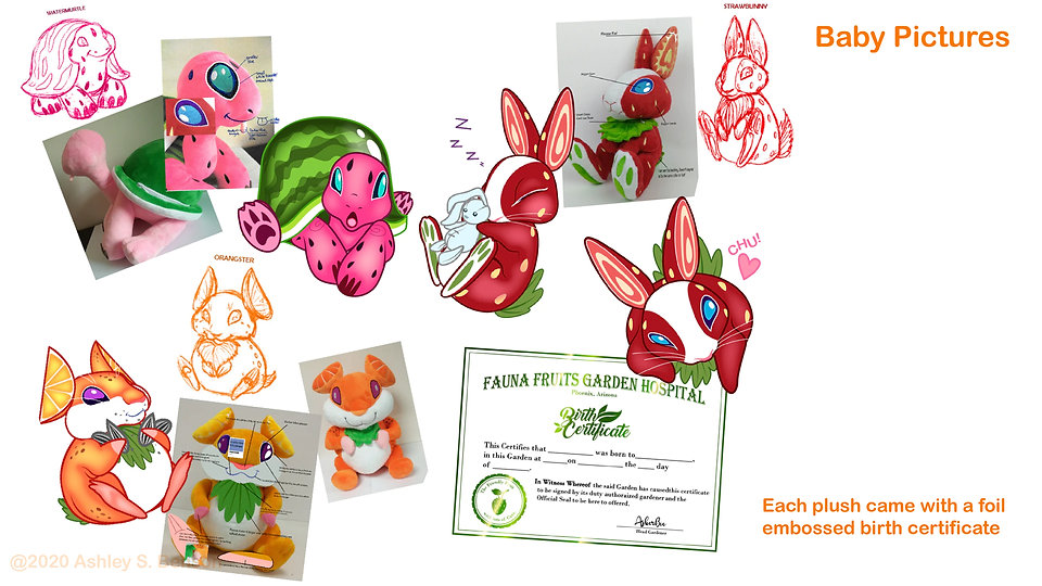11 Fauna Fruits Pitch-01.jpg
