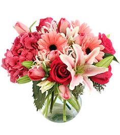 embraceable-pink-floral-design-VA00216.2