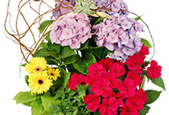 Charming Garden Basket Flowering Plants
