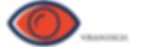 Logo VISANTECH.png