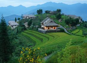 Vietnam's Treasures