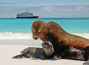 Lindblad Galapagos.jpg