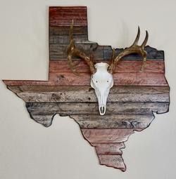 Texas Plaque WT Euro Mount -1