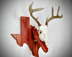 West Texas WT Euro