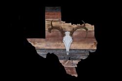 Texas Plaque WT Euro Mount-2