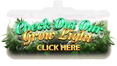 Click here to check out our grow lights.