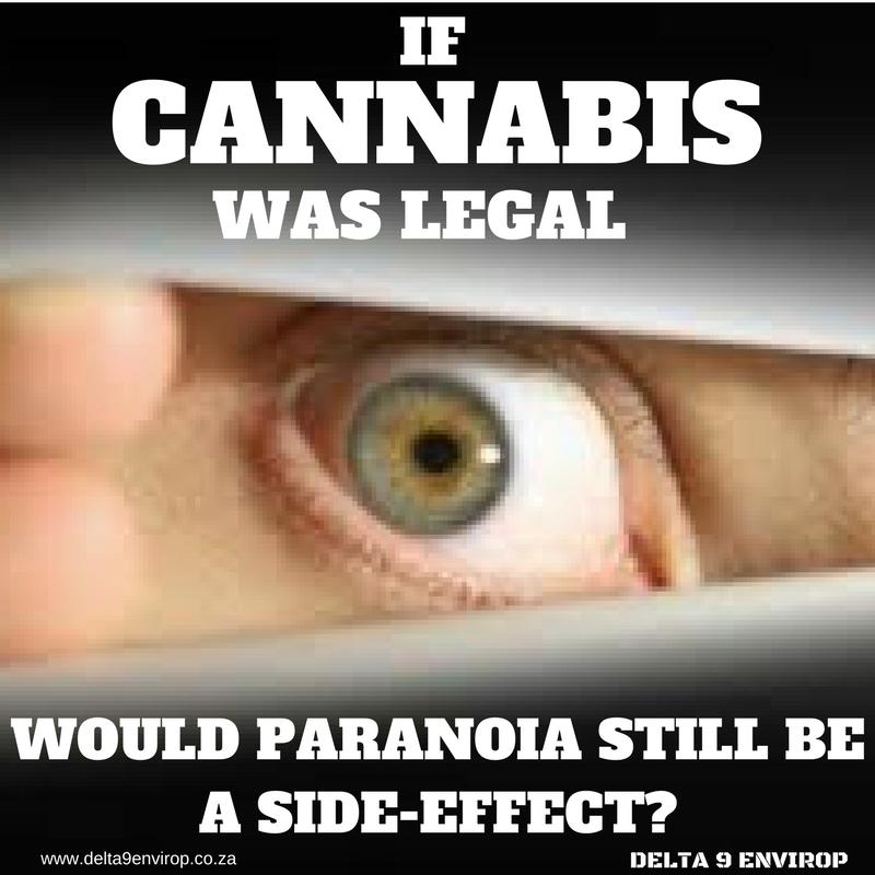 Delta 9 Envirop meme cannabis paranoia falacy
