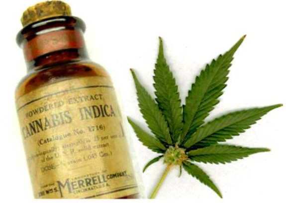 cannabis indica medicine and cannabis leaf