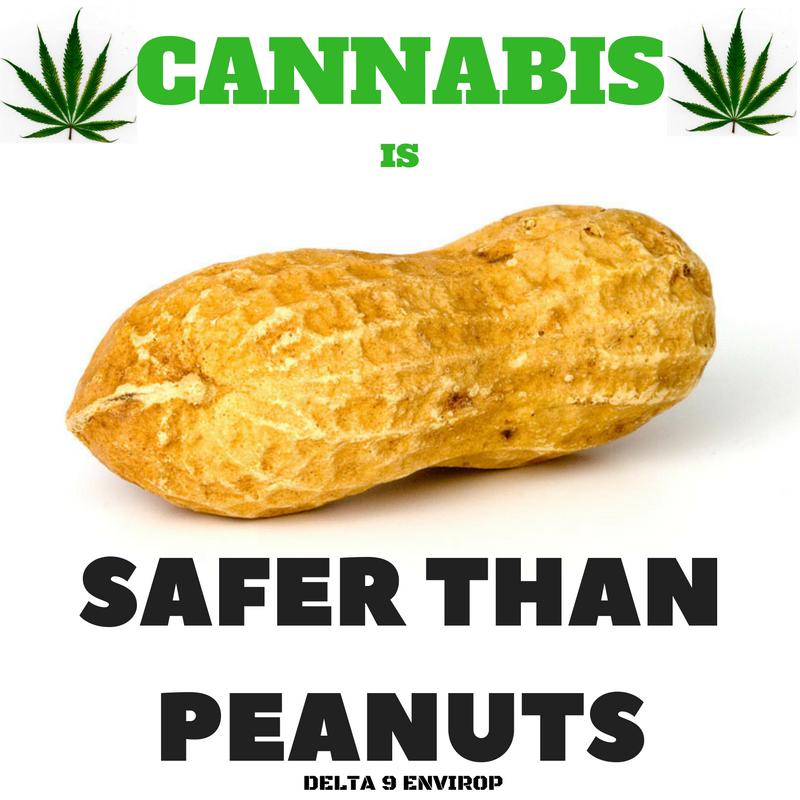 Delta 9 Envirop meme peanuts